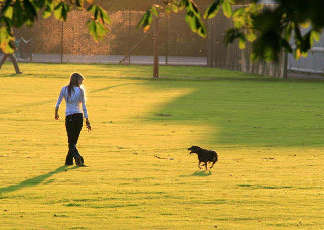 Woman walking dog in the park